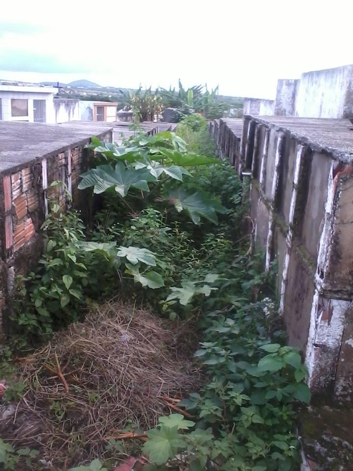 cemiterio4