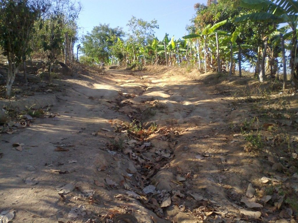 estrada2